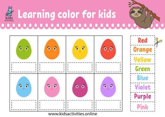 match color with egg shape