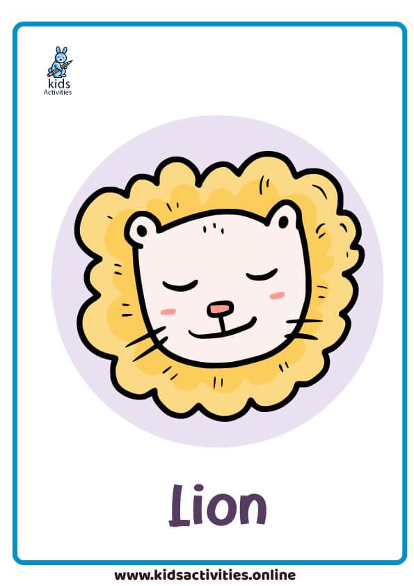 animal flashcard - lion