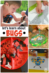 Learn About Bugs