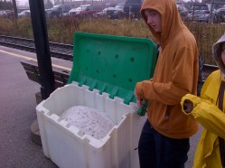 Disgusted by the Salt stockpiles at the GO Station