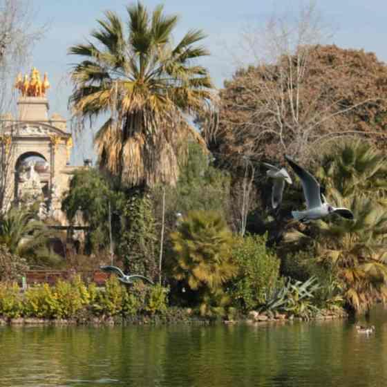 Z dziecmi w Parku Ciutadella
