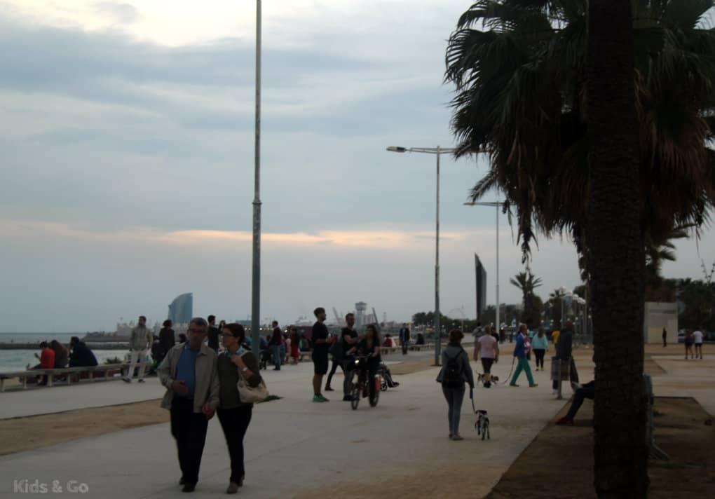 Plaże Barcelonety