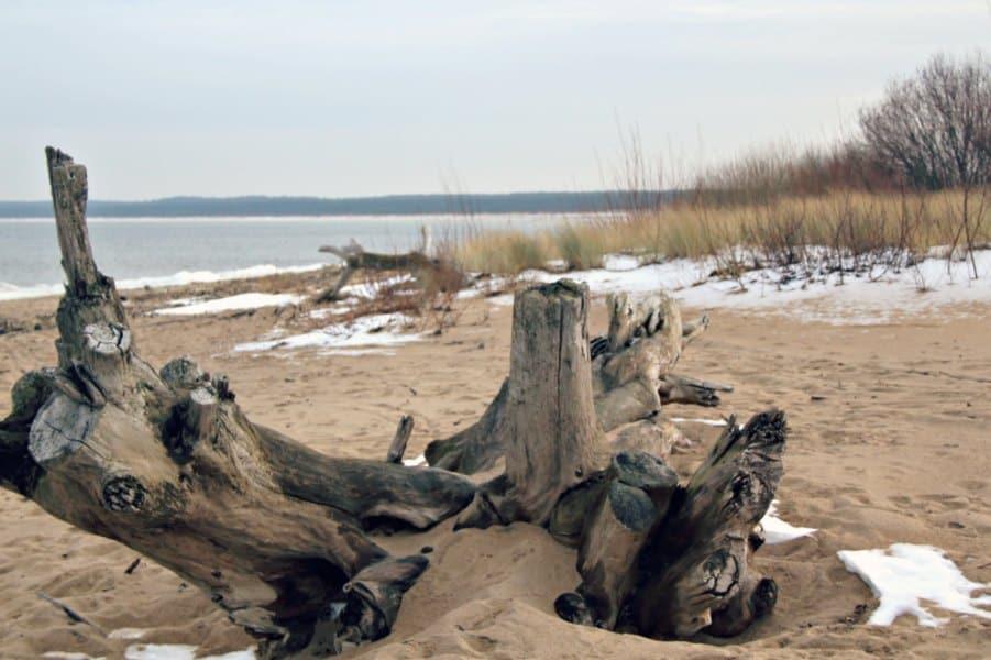 Gdanskie plaże