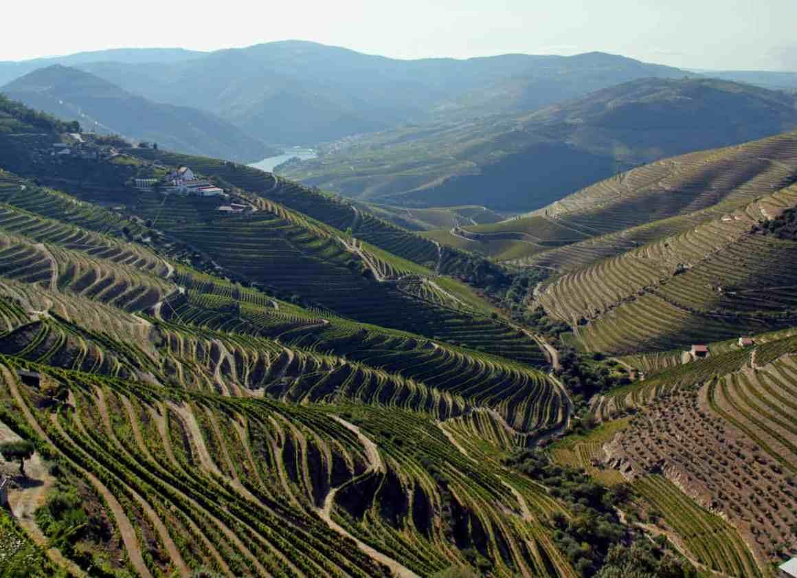 Co warto zobaczyć w Portugalii - Dolina rzeki Douro