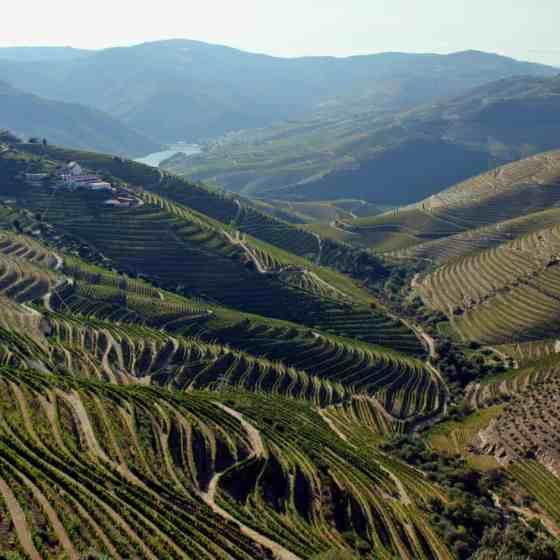 Portugalia co warto zobaczyć - Dolina Douro
