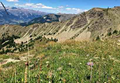 Alpy Poludniowe latem