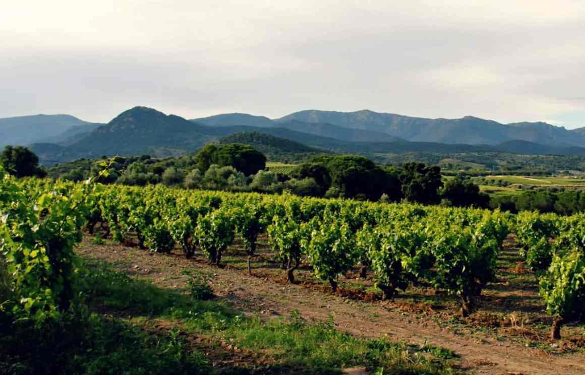wakacje na wsi w Katalonii