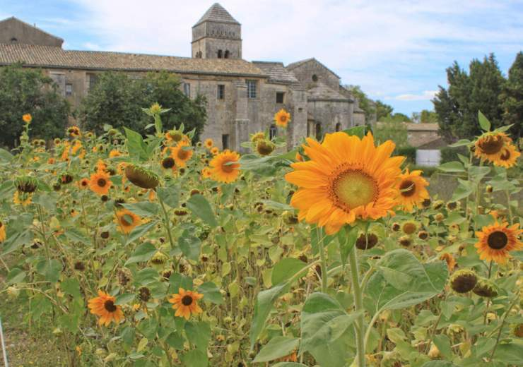 Beautiful Places to Visit in Provence St. Remy-Kids Are A Trip