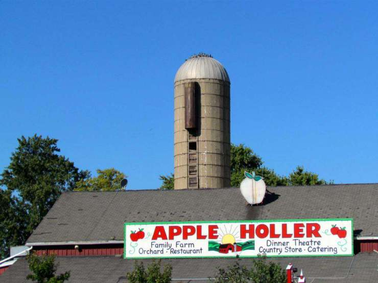 apple orchard tips and recipes Apple Holler kids are a trip