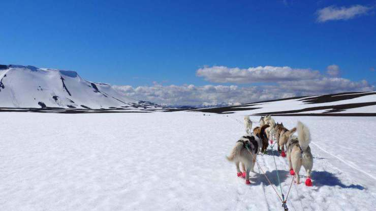 Best Travel Destinations for Families Iceland-Kids Are A Trip