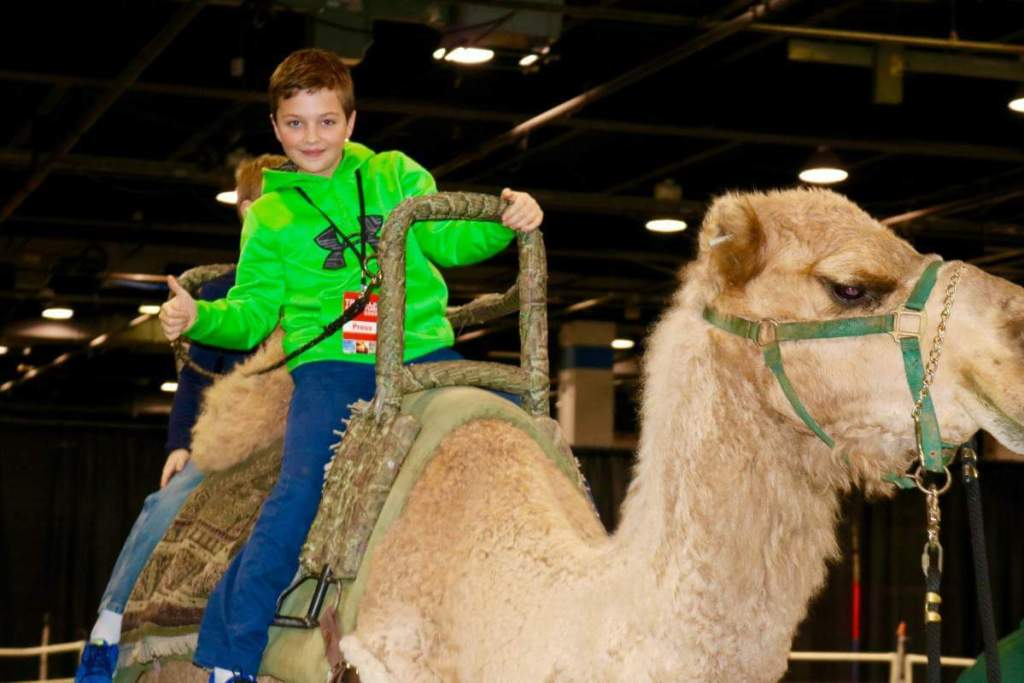 Travel and Adventure Show Riding a Camel-Kids Are A Trip