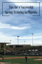 How to Have a Successful Day at Spring Training in Phoenix