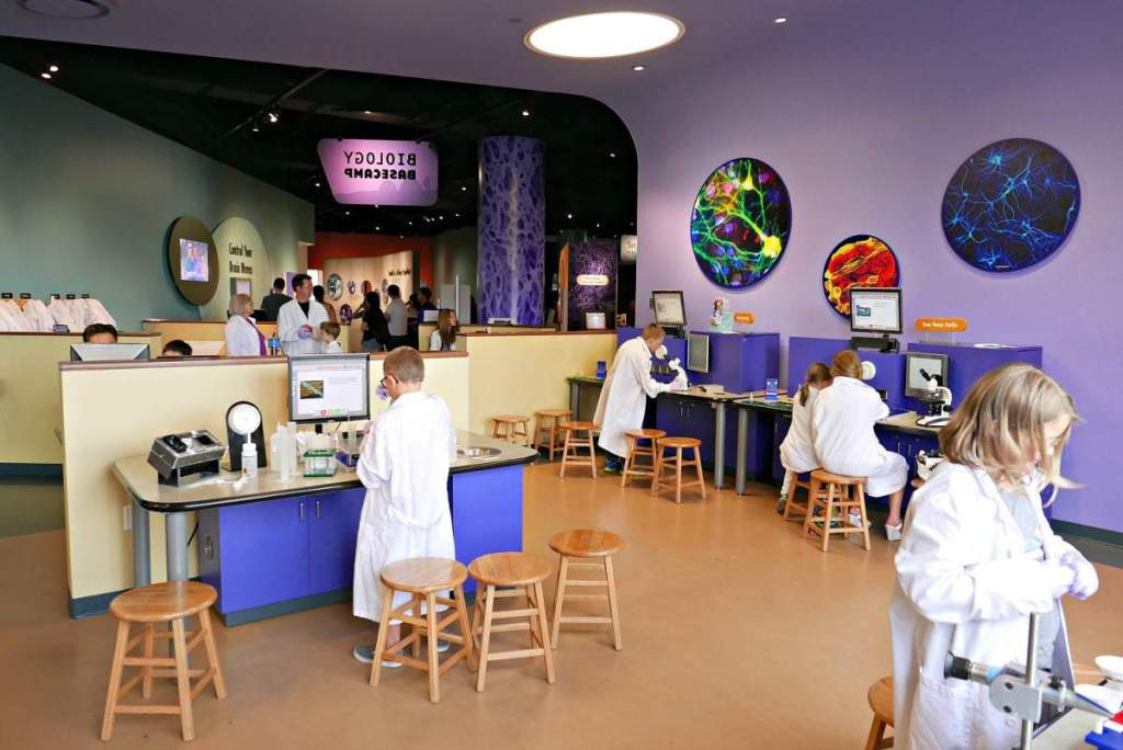 Top 5 Family Friendly Things to do in Denver Museum Biology Basecamp-Kids Are A Trip