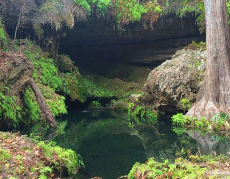 Family Friendly Things to Do in Austin, Texas Westcave-Preserve-