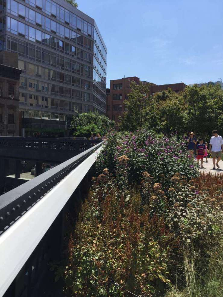 Family Friendly Things to Do in Manhattan Highline Park-Kids Are A Trip