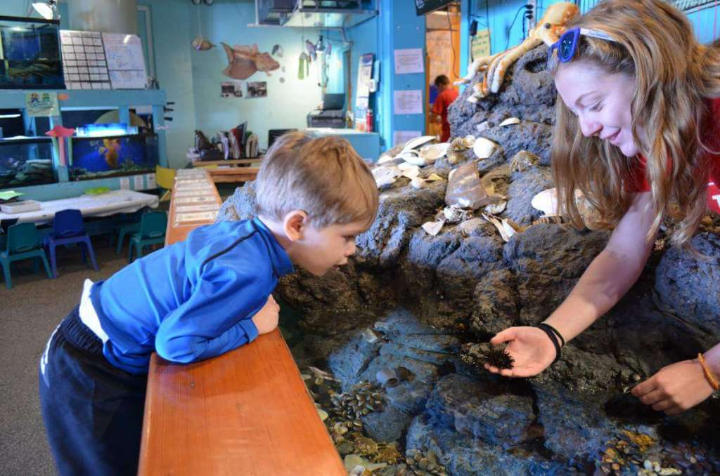 Family Friendly Things to do in Newport, Rhode Island Aquarium-Kids Are A Trip