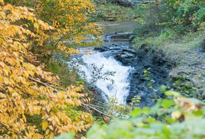 Fall Day Trips from NYC Watkins Glen-Kids Are A Trip