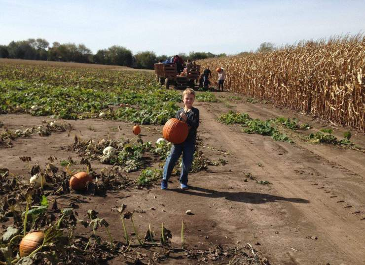 Family Fun Fall Activities in Chicago and Illinois Pumpkin Patch-Kids A