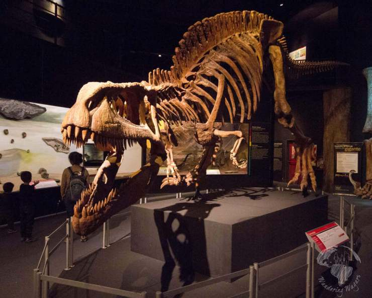 Things to Do in Puerto Madryn, Argentina Trelew-Dinosaur-Museum-Kids Are A Trip