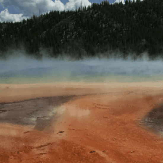 Top 5 Family Friendly Things to Do in Yellowstone