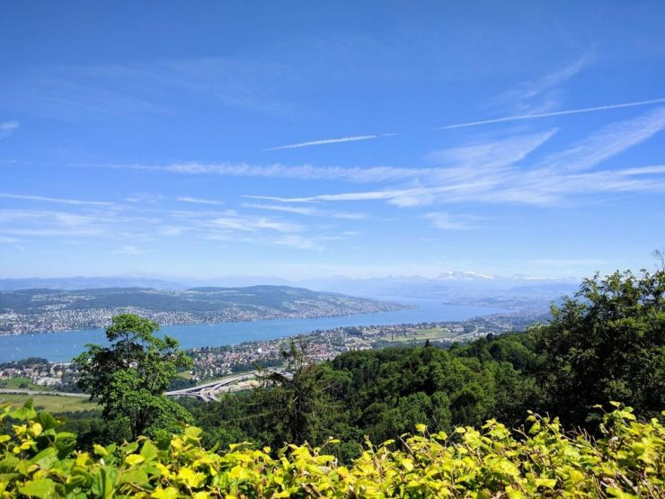 Family Friendly Things to Do in Zurich Uetliberg-Kids Are A Trip