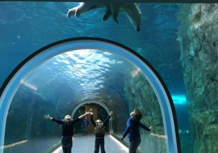 Best Family Vacation Winnipeg-Kids Are A Trip