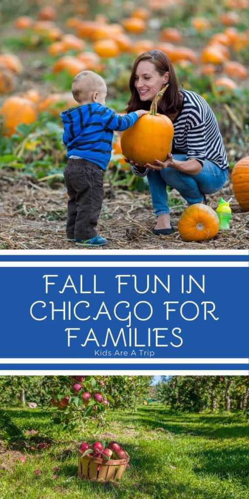 Fun Things to Do in and Around Chicago in the Fall