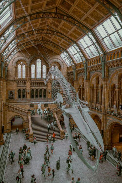 Victoria-Albert-Museum-London-for-Teens-Kids-Are-A-Trip