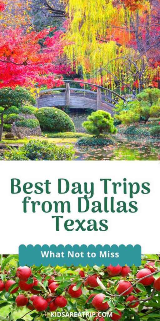 Dallas Day Trips Not to Miss