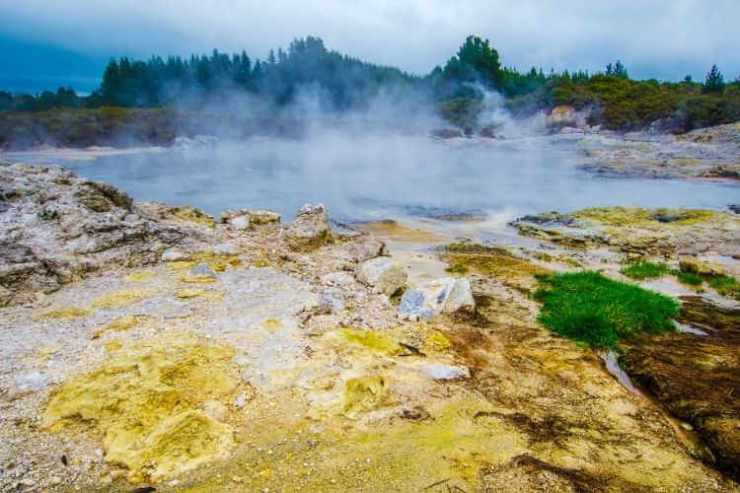 Rotorua geothermal springs New Zealand-Kids Are A trip