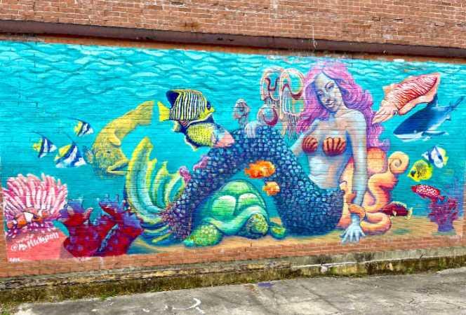 Mermaid wall mural street art Beaumont