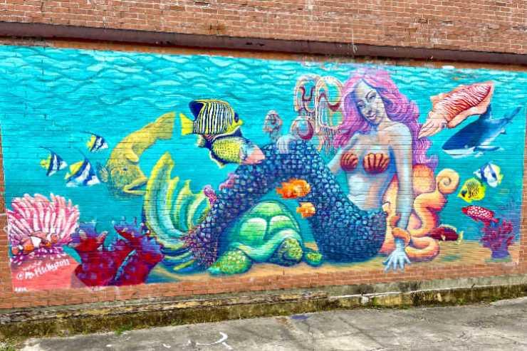 Mermaid Wall mural Beaumont