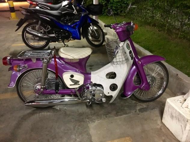 Honda Violett (Kette!)