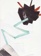 Erika Badu's Digital Arousal Consumption - Matthew Wood