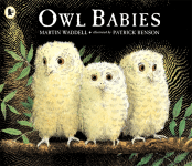 Owl Babies book cover - link to story resources page