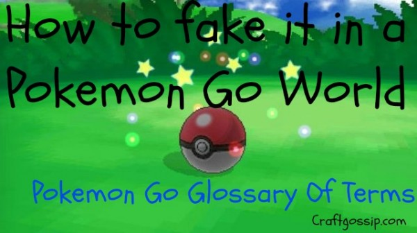 pokemon-go-glossary-of-terms