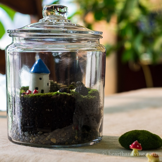 DIY Fairy terrarium