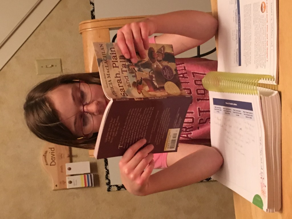 Homeschool reading curriculum from Apologia