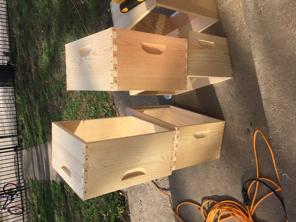 Homestead updates, assembling bee hives