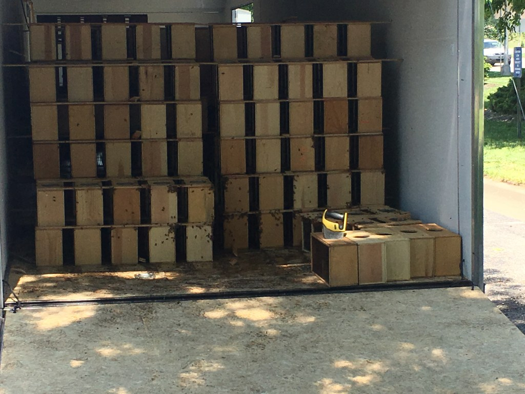 Truck full of package bees, homestead updates