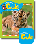 RR Cub digital Magazine