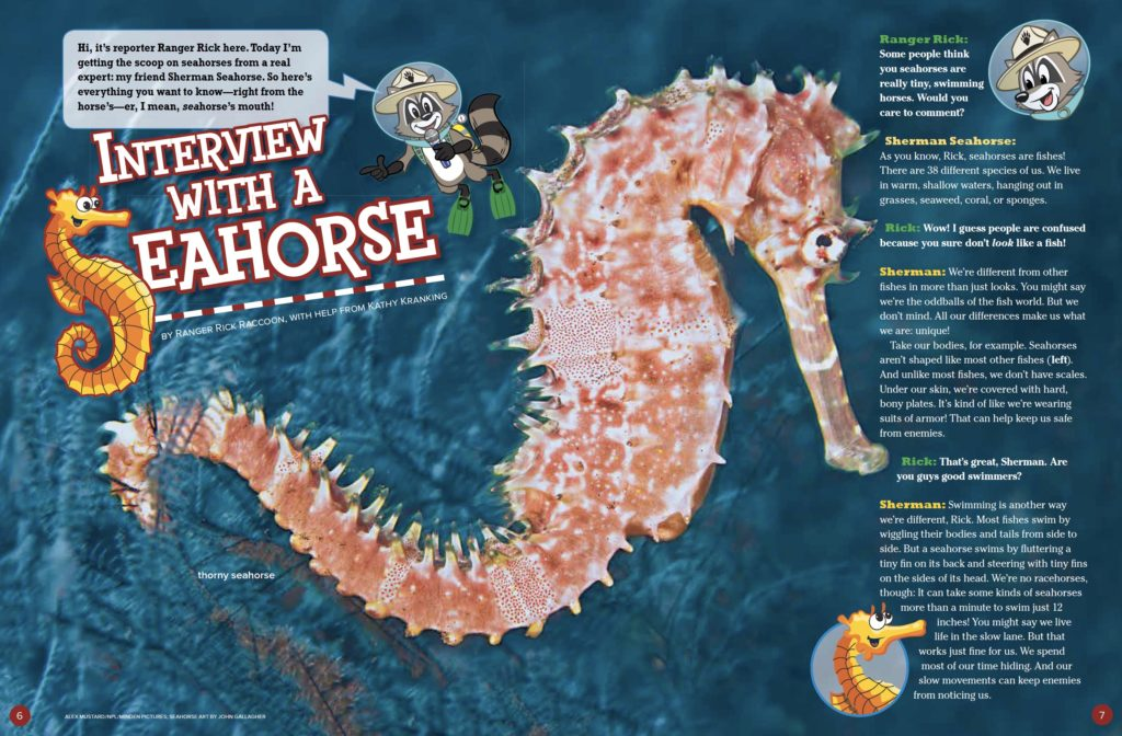 Seahorse Ranger Rick April 2017 1