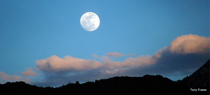 Nature walk moon circle
