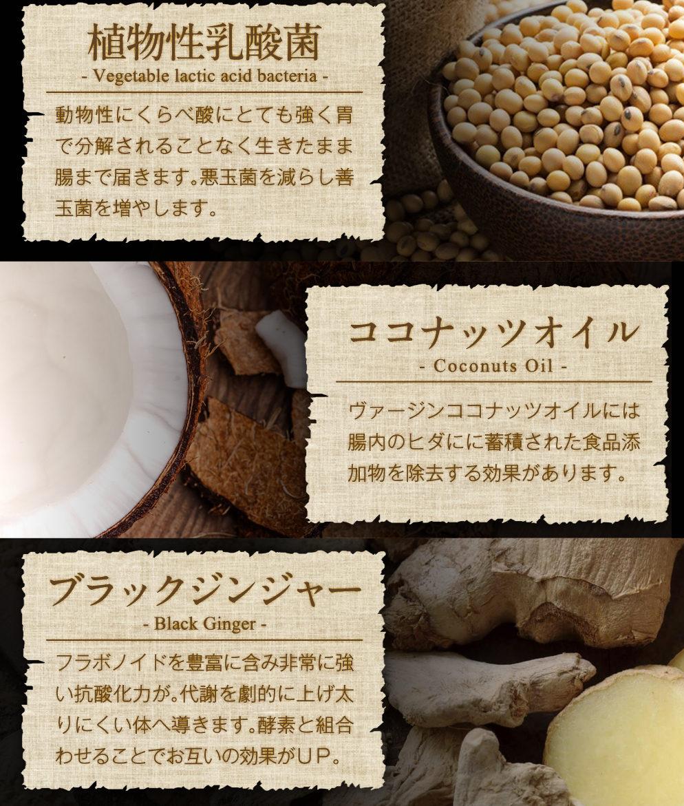 麹と生酵素の成分を徹底解析