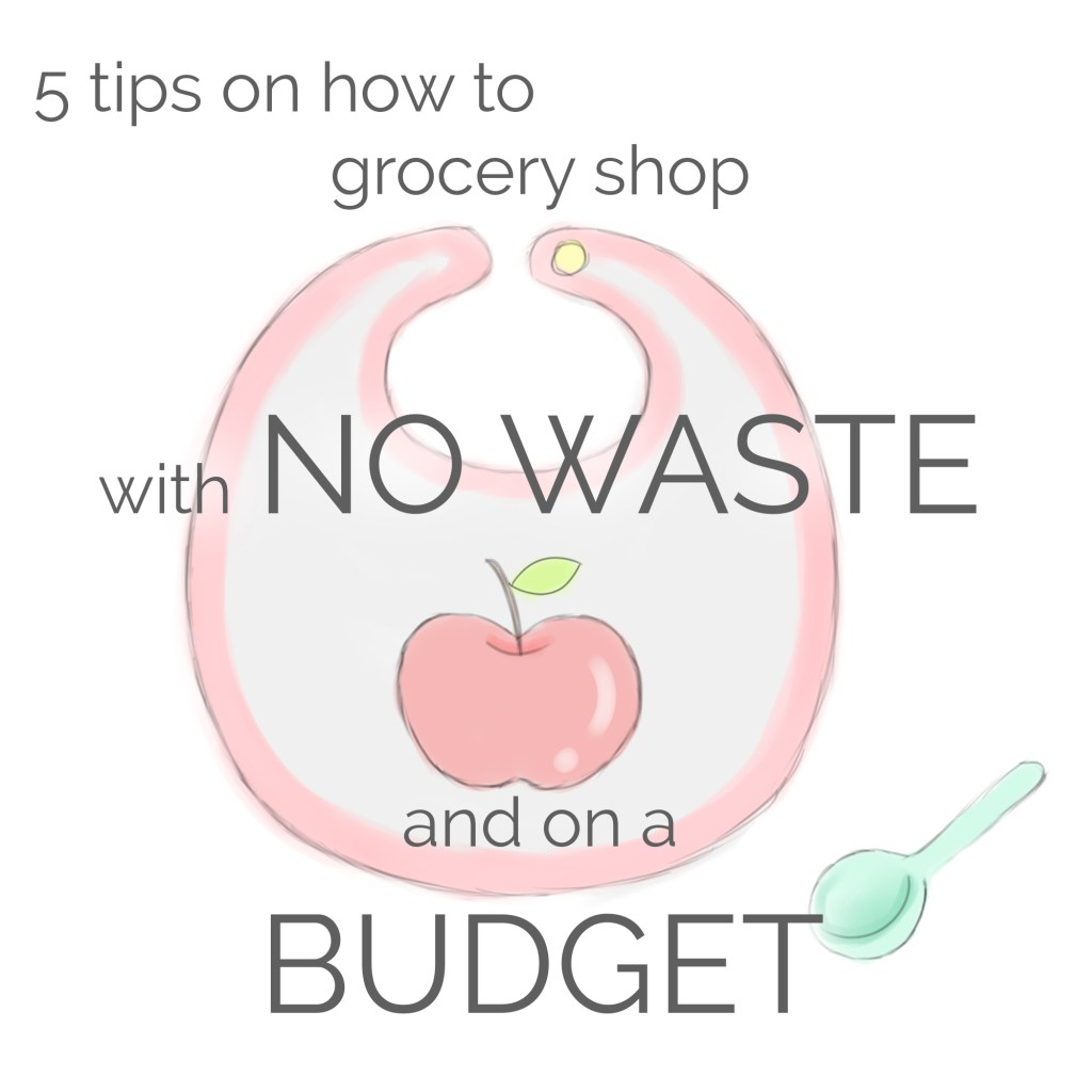grocery shopping tips for no waste and keeping within a budget