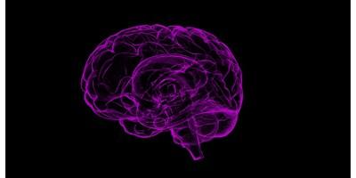 Hersenvliesontsteking