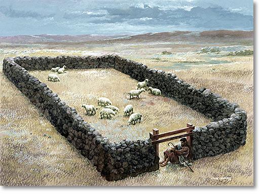 Door-of-the-Sheepfold