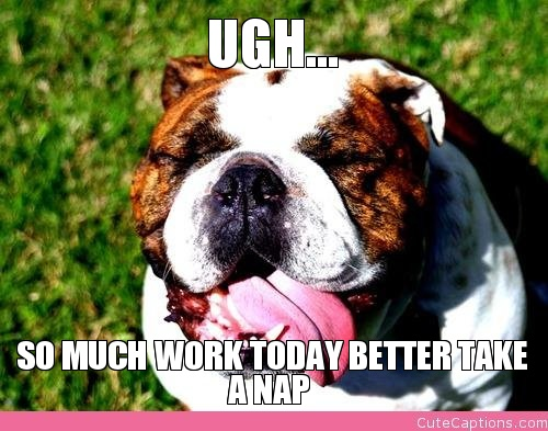 ugh-so-much-work-today-better-take