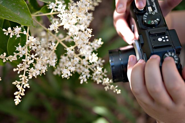 kidsfoto.es ¿Podemos hacer que a nuestros hijos les guste la fotografía? fotografo de niños fotografia para niños fotografia niños zaragoza fotografía infantil fotografia documental niños