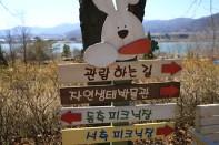 Yangpyeong Wild Flower Arboretum